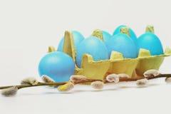 Παραδοσιακά αυγά που χρωματίζονται στο μπλε χρώμα μέσα στο κιβώτιο χαρτοκιβωτίων Στοκ εικόνες με δικαίωμα ελεύθερης χρήσης