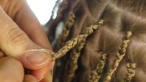 Παραδοσιακά αφρικανικά hairstyles στις λευκές γυναίκες ο επαγγελματικός κομμωτής υφαίνει τις κοτσίδες απόθεμα βίντεο