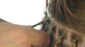 Παραδοσιακά αφρικανικά hairstyles στις λευκές γυναίκες ο επαγγελματικός κομμωτής υφαίνει τις κοτσίδες 4K απόθεμα βίντεο