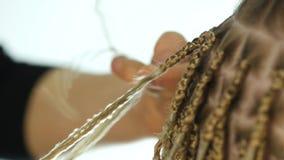 Παραδοσιακά αφρικανικά hairstyles στις λευκές γυναίκες ο επαγγελματικός κομμωτής υφαίνει τις κοτσίδες 4K φιλμ μικρού μήκους