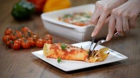 Παραδοσιακά μεξικάνικα enchiladas με το κρέας κοτόπουλου, την πικάντικα σάλτσα ντοματών και το τυρί σε ένα πιάτο πικάντικα tacos  απόθεμα βίντεο