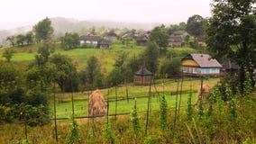 Παραδοσιακά του χωριού σπίτια στο ορεινό χωριό Χαρακτηριστική αγροτική σκηνή Καλοκαίρι στο χωριό Πράσινοι τομείς και δάση μέσα απόθεμα βίντεο