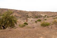 Παραδοσιακές αφρικανικές του χωριού καλύβες στοκ εικόνες με δικαίωμα ελεύθερης χρήσης