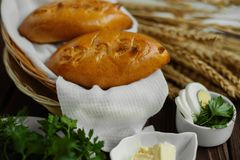 Παραδοσιακές ρωσικές πίτες με τα αυγά και τα χορτάρια στοκ εικόνα με δικαίωμα ελεύθερης χρήσης