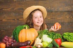 Παραδοσιακές φθινοπωρινές αγροτικές δραστηριότητες φεστιβάλ για τα παιδιά Η αγροτική αγορά παιδιών κοριτσιών με το παιδί συγκομιδ στοκ φωτογραφίες με δικαίωμα ελεύθερης χρήσης