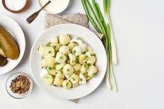 Παραδοσιακή γερμανική σαλάτα πατατών Στοκ Φωτογραφία