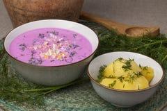 Παραδοσιακή λιθουανική κρύα ρόδινη σούπα τεύτλων Στοκ Φωτογραφίες