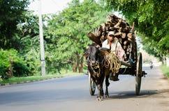 Παραδοσιακή μεταφορά φορτίου φύσης, Σρι Λάνκα Στοκ φωτογραφία με δικαίωμα ελεύθερης χρήσης