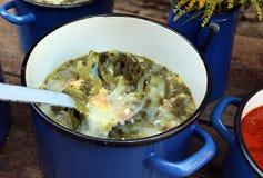 Παραδοσιακή ξινή σούπα Transylvanian Στοκ Εικόνες