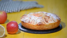 Παραδοσιακή πίτα μήλων με την κανέλα Χέρι γυναικών με το κόσκινο που ψεκάζει τη ζάχαρη σκονών στην πίτα φιλμ μικρού μήκους