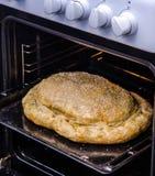 Παραδοσιακή πίτα kurnik με το σπόρο σουσαμιού στοκ φωτογραφίες με δικαίωμα ελεύθερης χρήσης