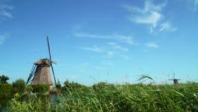 Παραδοσιακοί ανεμόμυλοι στην Ολλανδία Παγκόσμια κληρονομιά της ΟΥΝΕΣΚΟ απόθεμα βίντεο