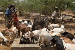 Παραδοσιακοί αφρικανικοί νομάδες στοκ εικόνα