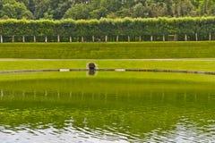 Παραδοσιακός γαλλικός κήπος. Κήπος ύδατος Στοκ Εικόνα