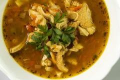 Παραδοσιακός και πολύ δημοφιλής στη σούπα ανατολής και της νότιας Ευρώπης από tripe βόειου κρέατος Στοκ εικόνες με δικαίωμα ελεύθερης χρήσης