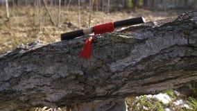 Παραδοσιακό ιαπωνικό κοντό ξίφος στη θήκη με τον κόκκινο θύσανο απόθεμα βίντεο