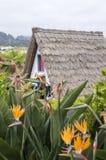 Παραδοσιακό φορητό σπίτι ποιμένων στο νησί της Μαδέρας Στοκ Εικόνες