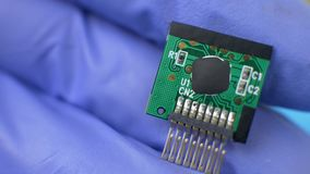 Παραδώστε τα μπλε γάντια κρατά την ηλεκτρονική πράσινη κάρτα φιλμ μικρού μήκους