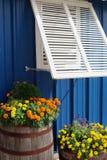 Παραθυρόφυλλο και λουλούδια παραθύρων στοκ φωτογραφία με δικαίωμα ελεύθερης χρήσης