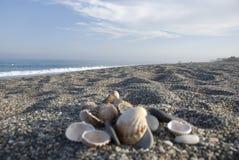 παραλία ανασκόπησης Στοκ Φωτογραφία
