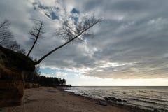 Παραλία ασβεστόλιθων στη θάλασσα της Βαλτικής με το όμορφο σχέδιο άμμ στοκ φωτογραφία με δικαίωμα ελεύθερης χρήσης