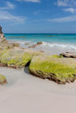 παραλία Βερμούδες Στοκ εικόνα με δικαίωμα ελεύθερης χρήσης