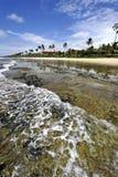 παραλία Βραζιλία Στοκ φωτογραφίες με δικαίωμα ελεύθερης χρήσης