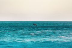 παραλία ι αγάπη Στοκ Εικόνες