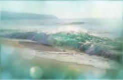 παραλία κάτοικος της Χαβάης Στοκ Φωτογραφία