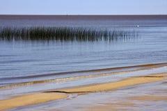 Παραλία και χλόη στο Ρίο de Λα plata Στοκ Φωτογραφίες