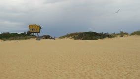 Παραλία και lifeguard καλύβα εισόδων λιμνών στην Αυστραλία φιλμ μικρού μήκους