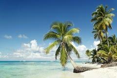 παραλία Καραϊβικές Θάλασ&sig Στοκ Φωτογραφία
