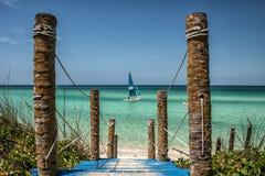 Παραλία, κοκοφοίνικες Cayo, Κούβα στοκ εικόνα