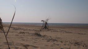 Παραλία κόλπων της θάλασσας της Βαλτικής με την άσπρη άμμο στο ηλιοβασίλεμα - βίντεο 4K με την αργή μετακίνηση καμερών και την εσ απόθεμα βίντεο