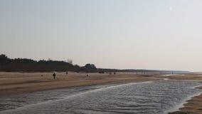 Παραλία κόλπων της θάλασσας της Βαλτικής με την άσπρη άμμο στο ηλιοβασίλεμα - βίντεο 4K με την αργή μετακίνηση καμερών και την εσ φιλμ μικρού μήκους