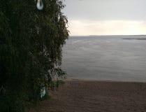Παραλία λιμνών μια βροχερή ημέρα με μια κουβέρτα που έχει ξεχάσει την άποψη του δέντρου σημύδων οριζόντων με τη μακρο πτώση φύλλω στοκ εικόνες με δικαίωμα ελεύθερης χρήσης