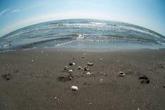 Παραλία Μαύρης Θάλασσας Στοκ Εικόνες