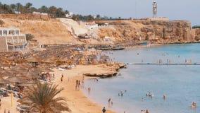 Παραλία με τις ομπρέλες και Sunbeds στο ξενοδοχείο πολυτελείας στη Ερυθρά Θάλασσα κοντά στην κοραλλιογενή ύφαλο Αίγυπτος απόθεμα βίντεο