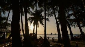 Παραλία με τις σκιαγραφίες των τουριστών μεταξύ των φοινίκων στο νησί Boracay Φοίνικες στις ακτίνες του ηλιοβασιλέματος απόθεμα βίντεο