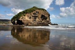 παραλία Νέα Ζηλανδία Στοκ Φωτογραφία