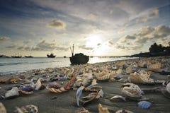Παραλία ΝΕ Mui, Βιετνάμ Στοκ Εικόνα