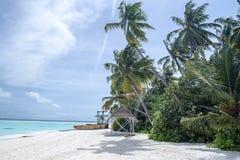 Παραλία νησιών των Μαλδίβες στοκ εικόνα με δικαίωμα ελεύθερης χρήσης
