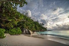 Παραλία παραδείσου στο anse Georgette, praslin, Σεϋχέλλες 20 Στοκ Εικόνες