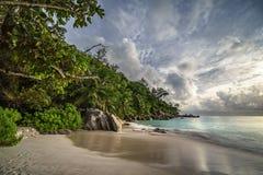Παραλία παραδείσου στο anse Georgette, praslin, Σεϋχέλλες 23 Στοκ εικόνα με δικαίωμα ελεύθερης χρήσης