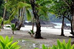 παραλία που εγκαταλείπ&ep Στοκ εικόνες με δικαίωμα ελεύθερης χρήσης