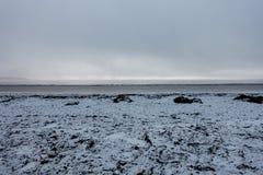Παραλία που καλύπτεται στο φύκι και το χιόνι Στοκ εικόνες με δικαίωμα ελεύθερης χρήσης