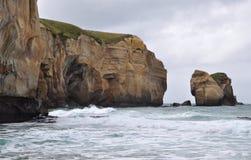 Παραλία σηράγγων - Dunedin στοκ εικόνα με δικαίωμα ελεύθερης χρήσης
