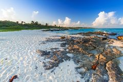 Παραλία στην καραϊβική θάλασσα στο Playa del Carmen Στοκ Εικόνα