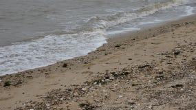 Παραλία στη δύση Mersea, Essex, Αγγλία 5 στοκ εικόνες