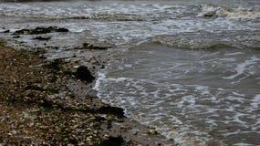 Παραλία στη δύση Mersea, Essex, Αγγλία 8 στοκ εικόνες